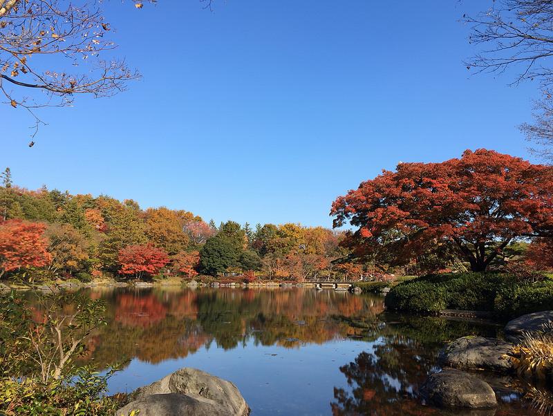 国営昭和記念公園 01